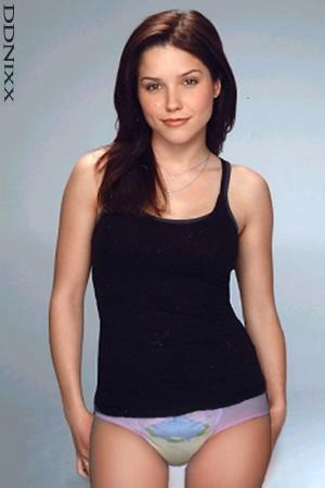 Sophia bush the hitcher